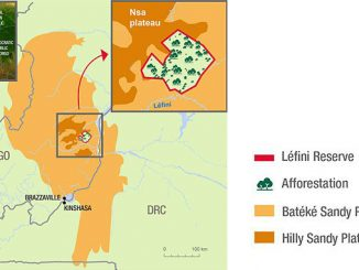 Total and Forêt Ressources Management will plant a 40,000-hectare forest on the Batéké Plateau