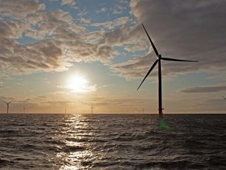 Ørsted sets the ambition to deliver a net-positive biodiversity impact from all new renewable energy projects it commissions from 2030 at the latest – a part of the company's new strategy