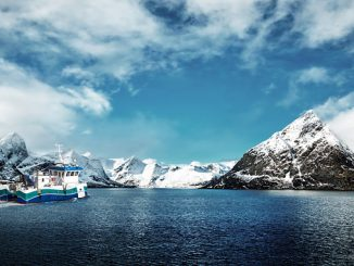 Volvo Penta is expanding its capabilities, experience, and range by becoming the majority shareholder of Norwegian marine battery and electric driveline solutions supplier ZEM AS