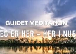 meditation guidet