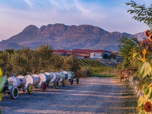 Shkodër Culture & Agrotourism