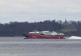 Fjord cat 15. marts 2016