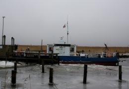 Ragna ved Randers fjord 27. december 2009