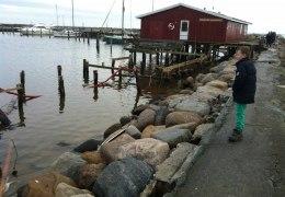 Efter stormen ved Gilleleje 28. december 2013