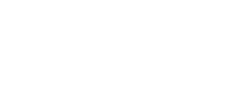 Stallmanns Fahrschule Logo