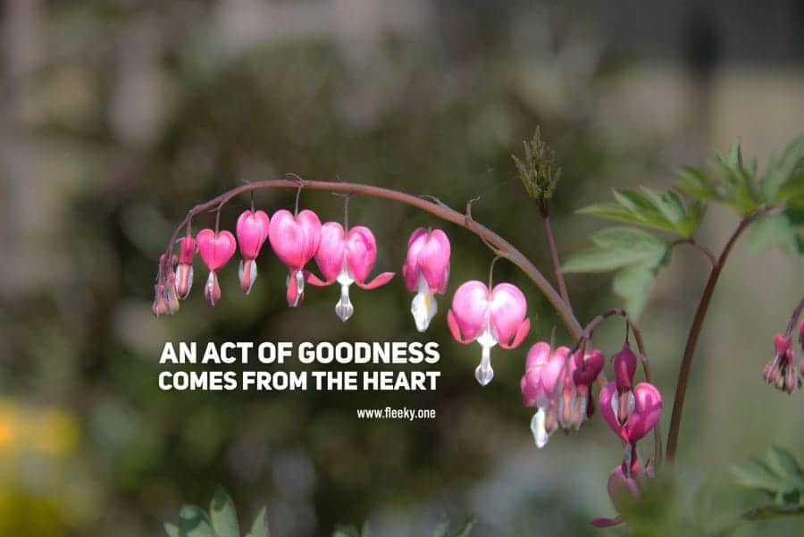 An act of goodness