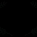 Special Jury Mention - ZOOM 11 International Film Festival - 2017