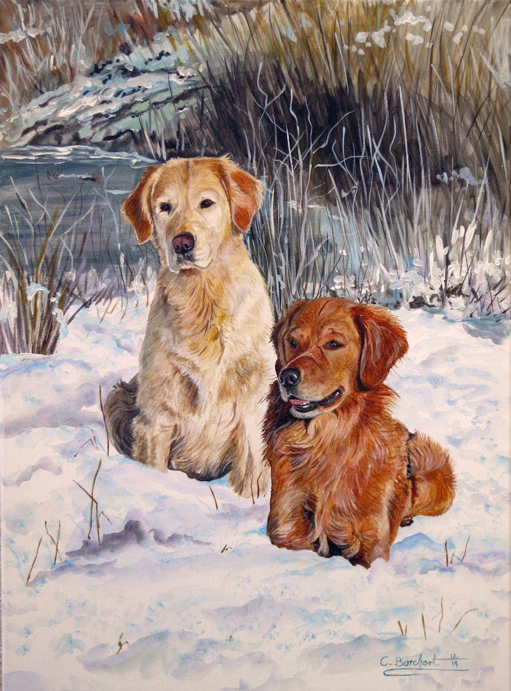 Goldens Winter