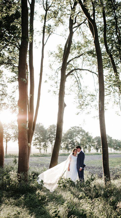 golden hour bruiloft babyblue dustyblue trouwhuisstijl