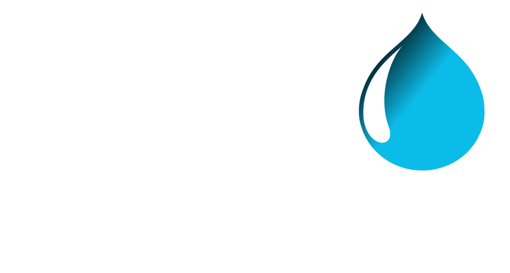 Finesse Cleaning Logo White