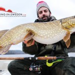 Pike caught Fishing in Sweden.