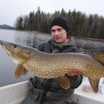 A real Swedish Pike.