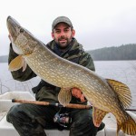 Sweden: Pike Fishing for Northern Pike.