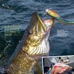 Pelagic vertical fishing for big pike in Sweden.