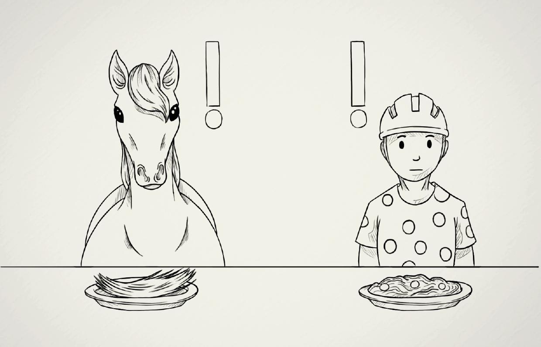 Cavalor animatie video