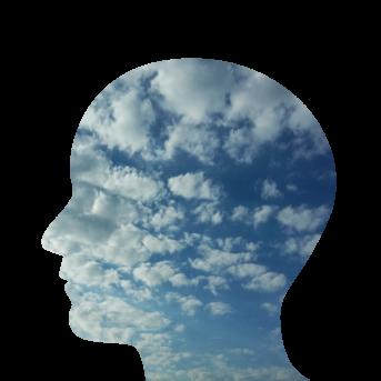 https://usercontent.one/wp/flegelnet.nl/wp-content/uploads/2018/01/Psychosomatische-Fysiotherapie-hoofd-343x343.png