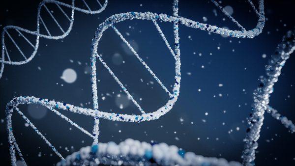 Food-trend-the-biological-revolution