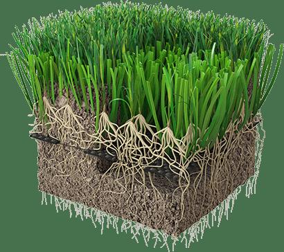 Kunstgræs, hybridgræs, champions league finale 2021