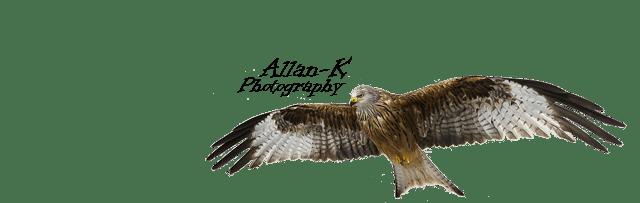 Fotografering som hobby Logo 2 65