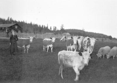 Foto 1-38