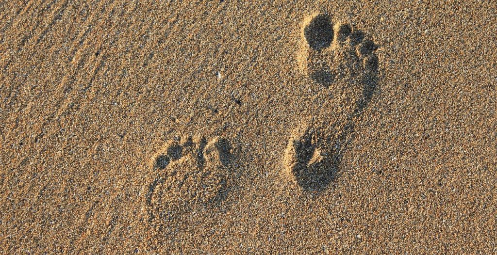 footprint, footstep, imprint