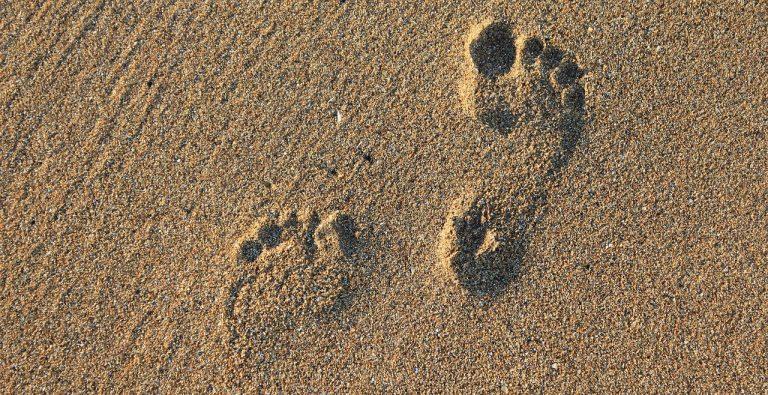 footprint, footstep, imprint