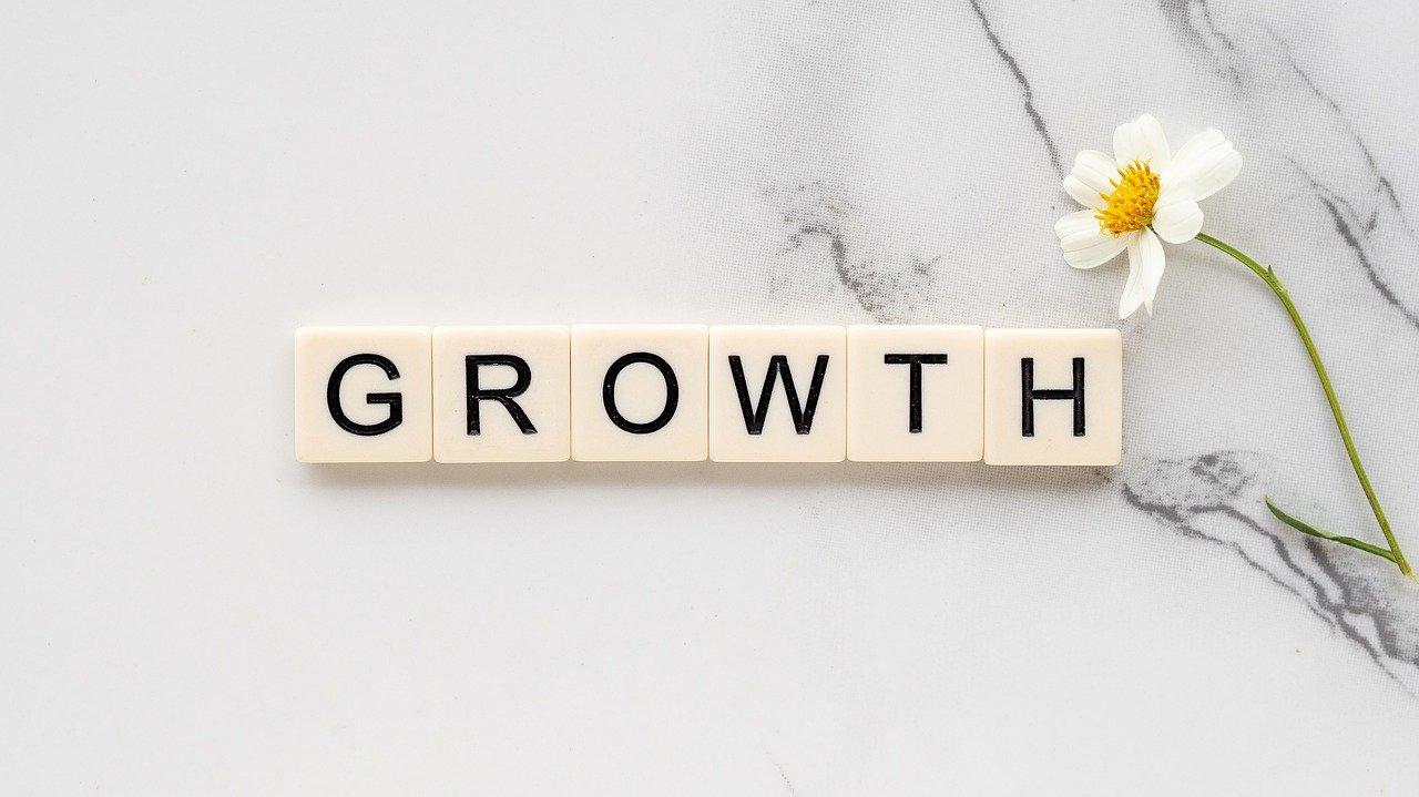 Texten: Growth och en blomma understryker modet att våga växa, som chef, ledare och som person. Susanne Sabith har metoderna och verktygen att nå dina mål genom coachning och mental träning för ledare