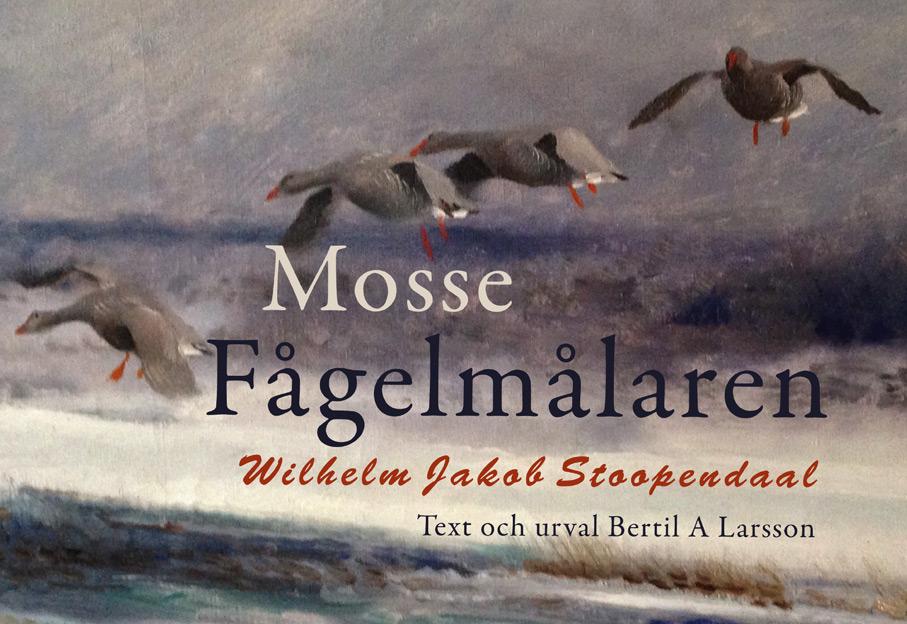 BILD: Omslaget till 'Mosse, Fågelmålaren Wilhelm Jacob Stoopendaal', Text och urval Bertil A Larsson, med målning av en flock gäss på väg att landa i ett upprört hav