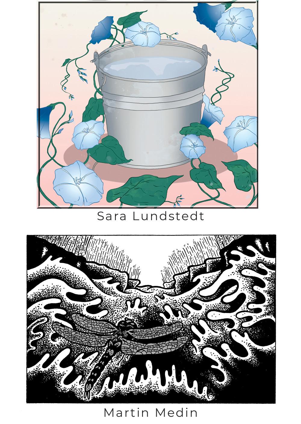 BILD: Spann omslingrad av Ipomea av Sara Lundstedt & Trollsländan jagande över vatten av Martin Medin