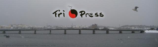 Bild: Borgmästarefjärden i Karlskrona med bron mellan Landbron och Hästö: fri som en fågel är du