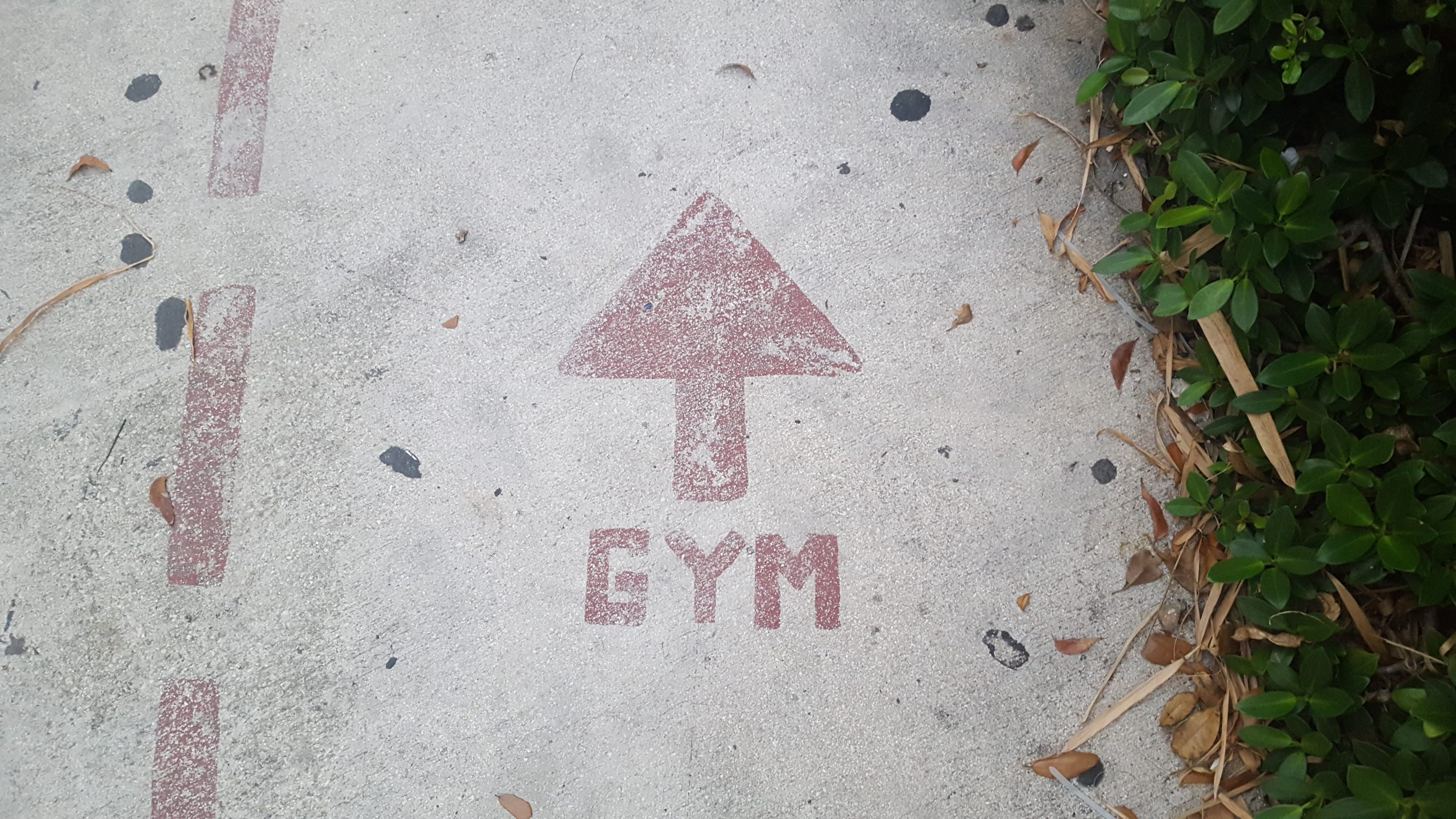 Gym this way