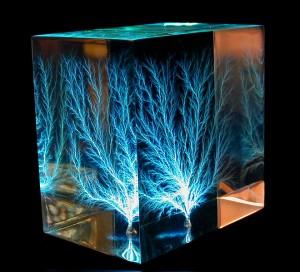 A Three Dimensional Lichtenberg Figure