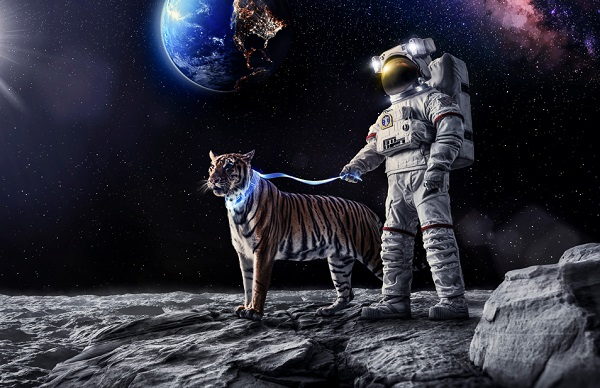 ces 2015 space tiger moon