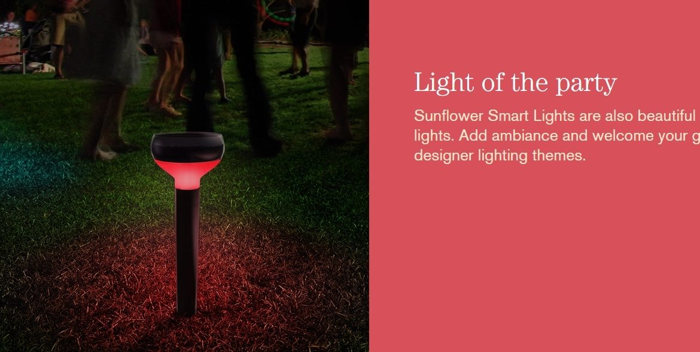 sunflower-smart-lights