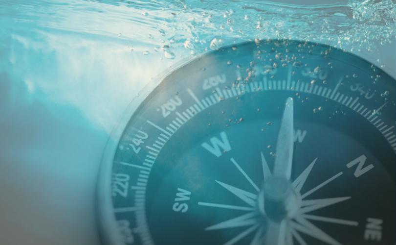 Liquiditätsplanung Vorlage