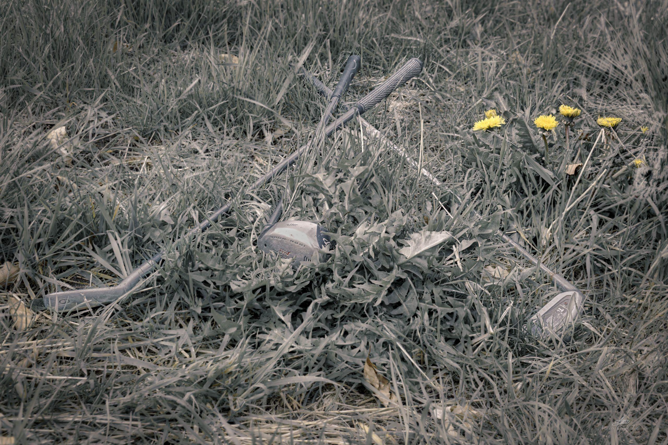 242/365, Assentoft, Randers