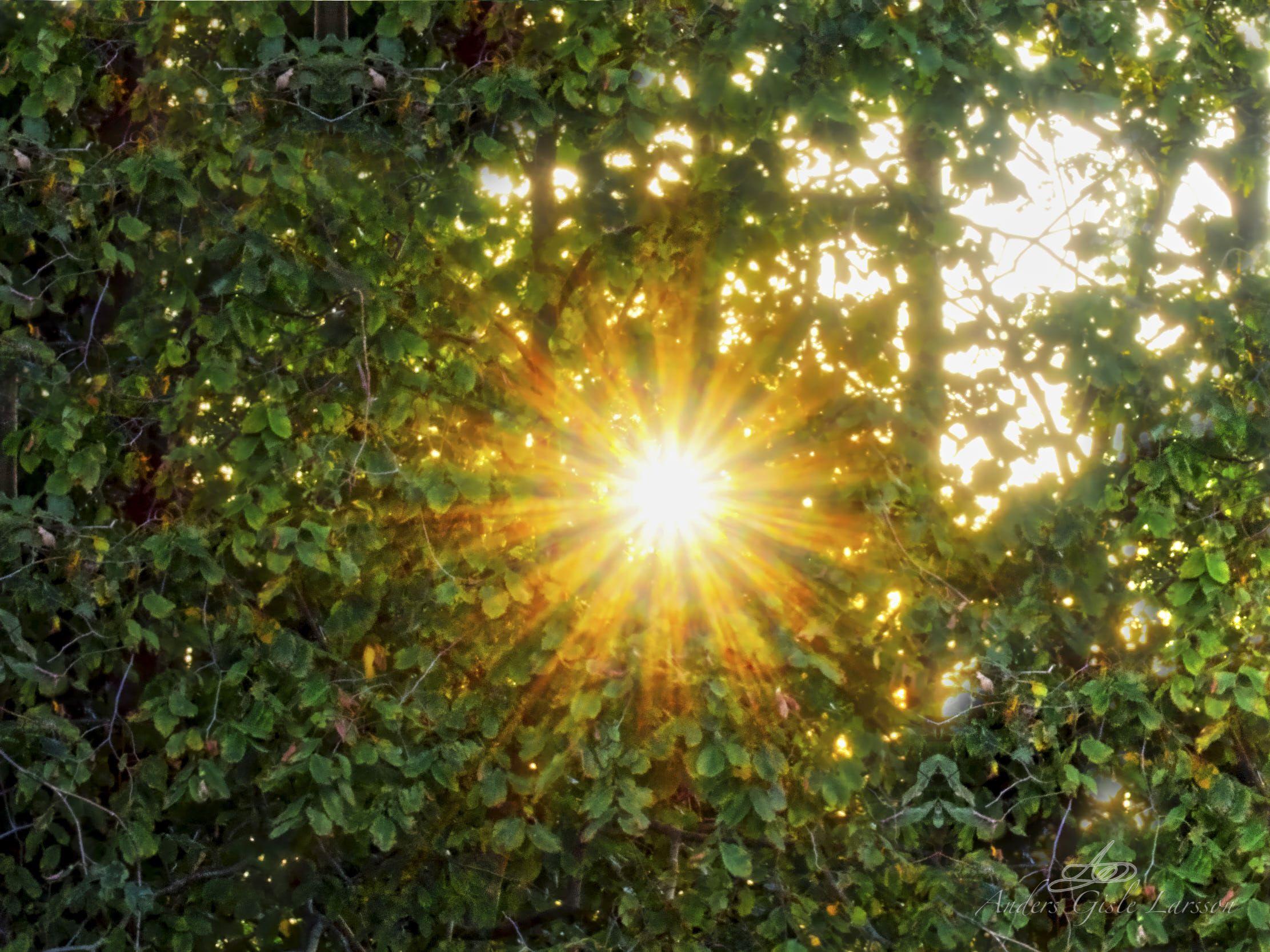 365/365, Sol stjerne, Assentoft, Randers