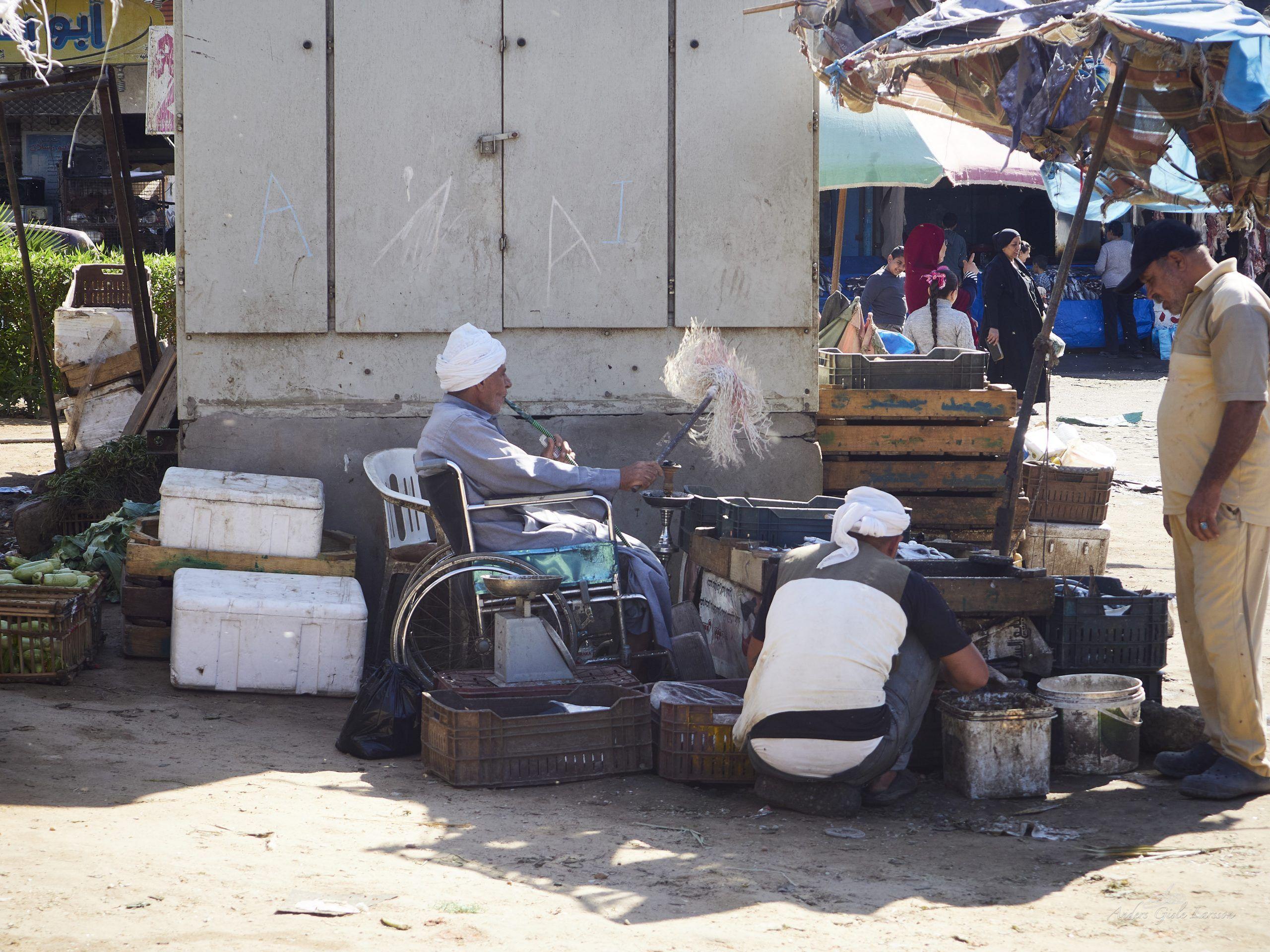 Frisk fisk, Uge 48, Frugt og Grønt Markedet, El Dahar, Hurgada