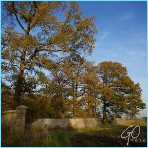 Dagfoto 309-2011 Verval