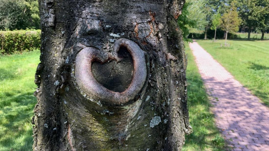 Hartstochtelijke liefde tussen beeld en taal