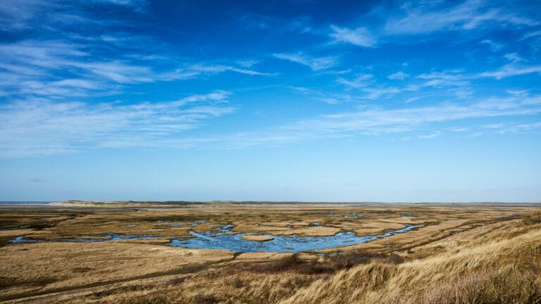 Luistertip natuurgebied op Texel - Gerard Oonk