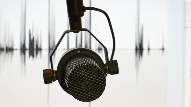Klem in de tonen van de taal microfoon - Gerard Oonk