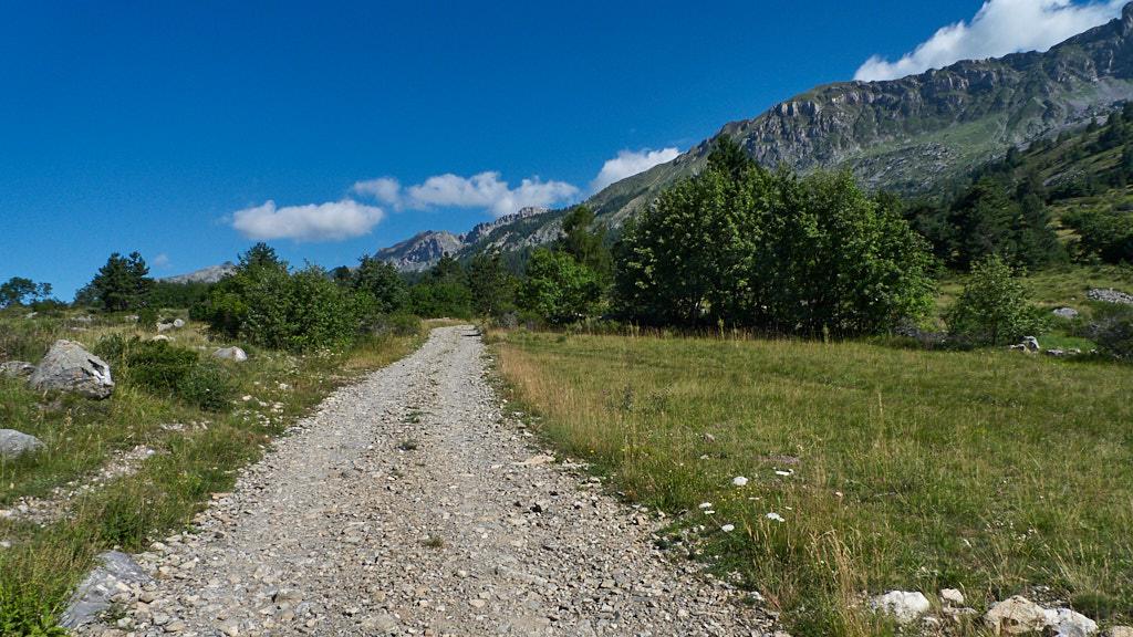 223-2013 De paden op, de bergen in