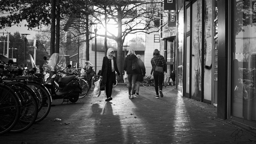 324-2014 Herfst in Amersfoort