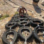 Lotta tires