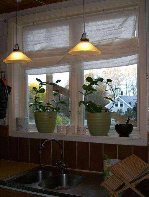 Kök 2009 var i norrläge och med snygg ställning utanför fönster!