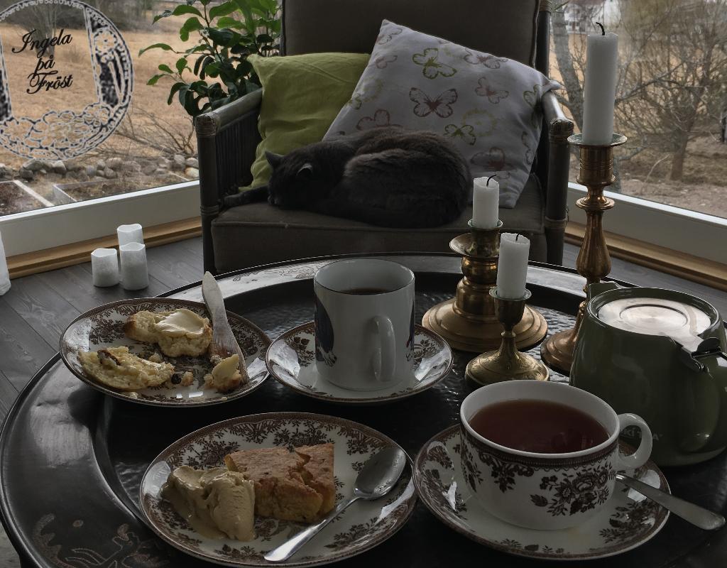 Te i vinterträdgården med sällskap. Vinterträdgården för liv och lust - för te och citron!