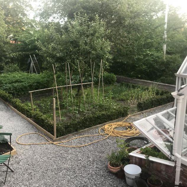 Grönsakslandet. Paradiset där man aldrig gräver i onödan