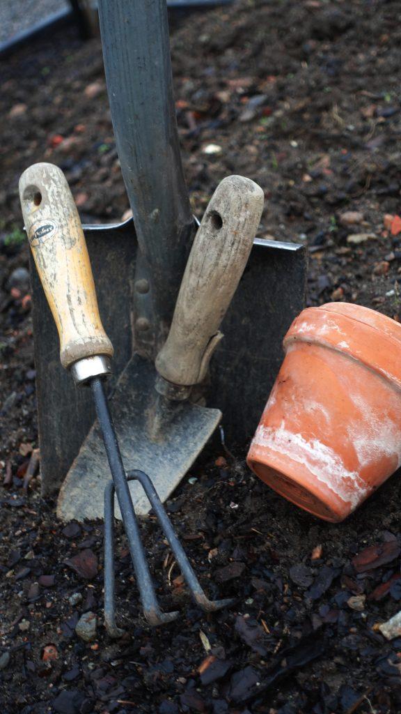 Måsten i trädgården. Spade Projekt i landen