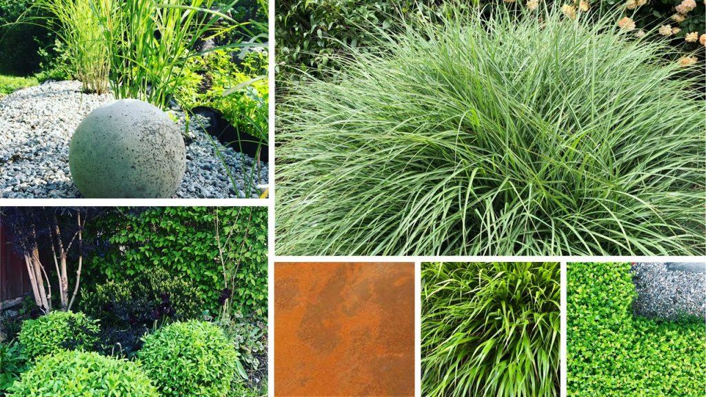 Rostigt och gräs. Minimalistiskt trädgård formklippt
